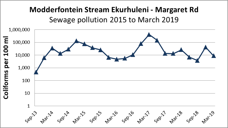 Graph showing trend in coliform counts per 100 ml for Modderfontein Stream 2013 to March 2019 from Ekurhuleni Water Quality Reports, showing high level sewage contamination.