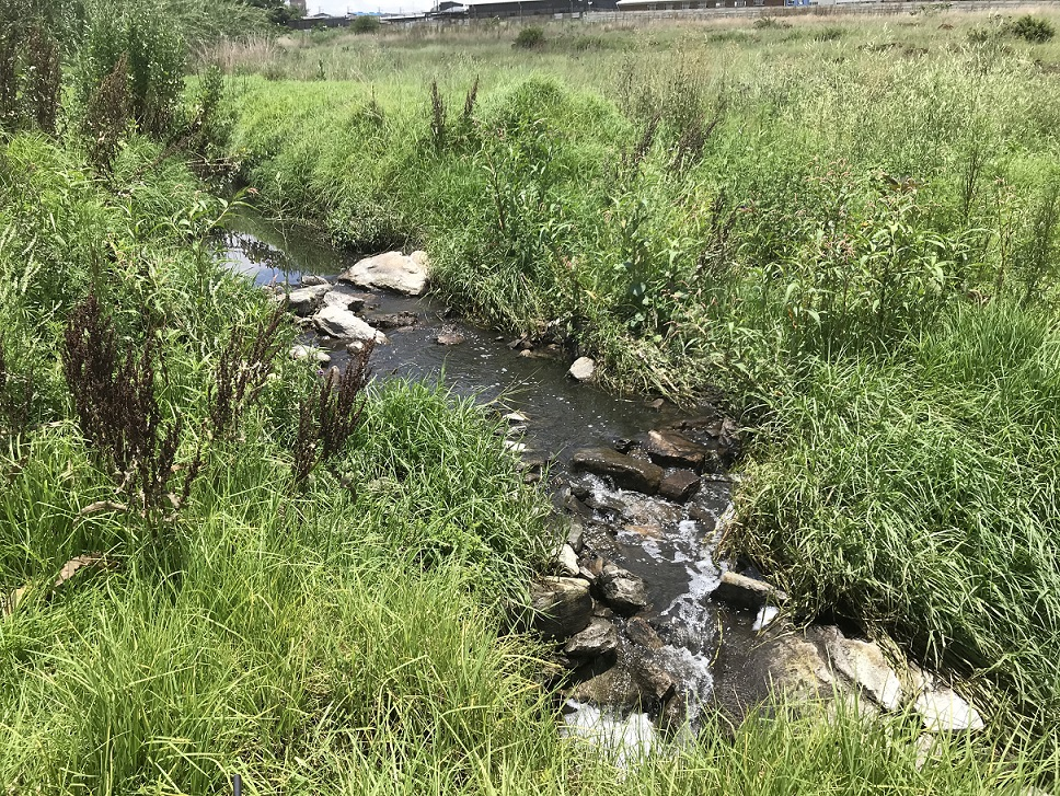 Photo of stream channel filled with rocks to allow vehicle access, not rehabilitated at the end of the Modderfontein Outfall Sewer Project, now diverting floodwaters